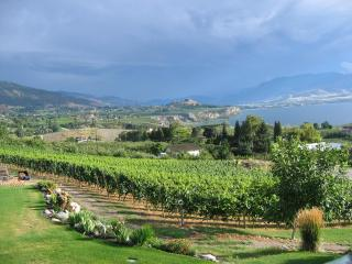 Arta B&B and Vineyard --  2 BR  Vacation Suite with Stunning Lakeviews - Okanagan Valley vacation rentals