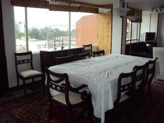 Presidential Suite at Half Price #5 PENTHOUSE - Bogota vacation rentals