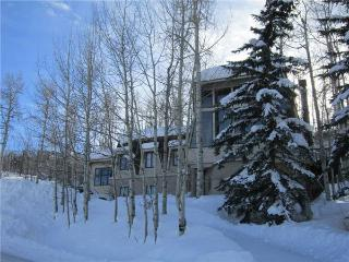 SLOPESIDE CHALET - Snowmass Village vacation rentals
