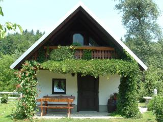 Apartment house SARA - Slovenia vacation rentals