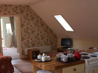 The Ferndale Holiday Flat - Much Wenlock vacation rentals