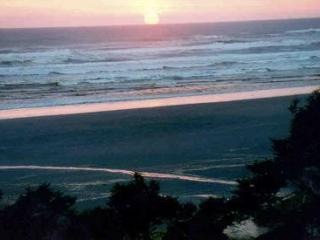 RoughHouse Cabin - Southern Washington Coast vacation rentals
