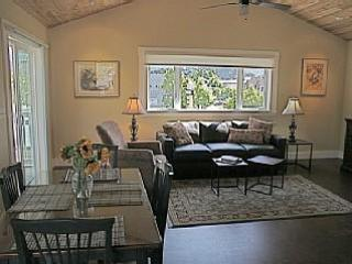 Bright, Sunny & Spacious - Healdsburg vacation rentals