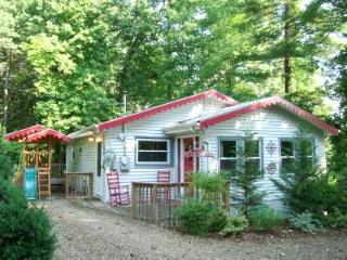 Romantic Story Book Cottage/HotTub/King &Q/FP/WiFi - Asheville vacation rentals
