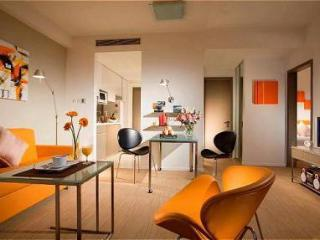 Singapore Spacious Studio apartments - Singapore vacation rentals