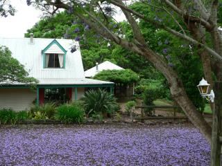 African Cottage - Maleny vacation rentals