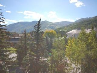 Vail 21 #503 - Beaver Creek vacation rentals