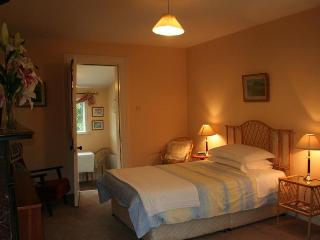 Ballsbridge Apartment Dublin - County Dublin vacation rentals