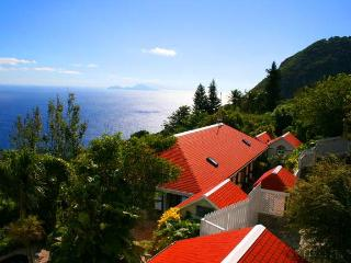 Saba's finest ocean villa, steps from the village - Saba vacation rentals