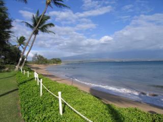 Wheelchair accessible condo 100 feet to the ocean! - Maui vacation rentals