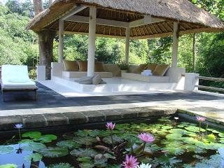 Villa Alam Damai - 'At peace with Nature' - Cepaka - Pererenan vacation rentals