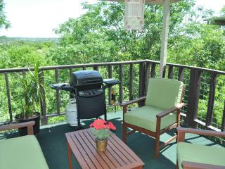 Treehouse Condo w/ view, near Zilker Park & DT! - Austin vacation rentals