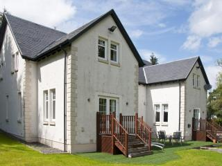10 berth luxury lodge on the banks of loch lomond - Ardlui vacation rentals