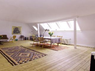 Beautiful and large Copenhagen apartment near Nyhavn - Copenhagen vacation rentals