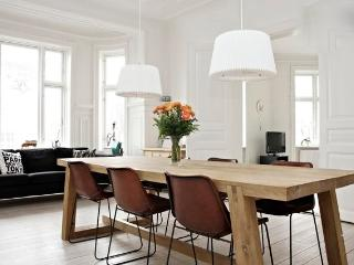 Large & beautiful Copenhagen apartment near the Metro - Copenhagen vacation rentals