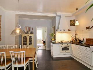 Large Copenhagen apartment with courtyard - Copenhagen vacation rentals