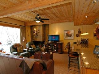 ChRoar21 - Aspen vacation rentals