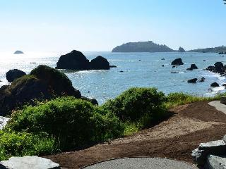 Brand New Pura Vida! Surrounded by the Pacific on 3 sides! - Trinidad vacation rentals