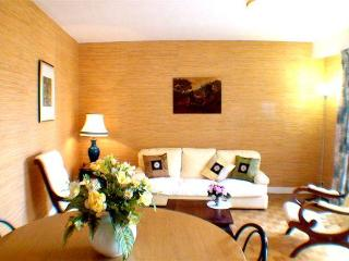 Spacious 1 bedroom apartment in Versailles center - Versailles vacation rentals