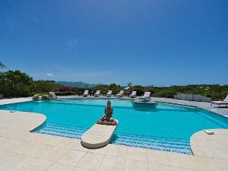 SOL E LUNA....Full AC in this beautifully appointed family villa w/ gorgeous new pool - Terres Basses vacation rentals