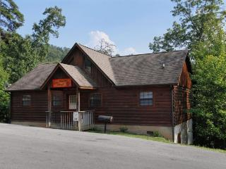 Cubs Mountain Retreat - Sevierville vacation rentals