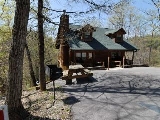 DANCES WITH WOLVES - Sevierville vacation rentals