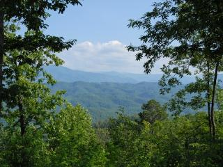 LOVE SHACK - Sevierville vacation rentals