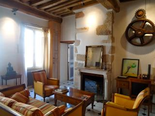 Spacious high ceiling medieval old town apartment - Dijon vacation rentals