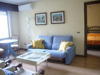 Salamanca Plaza Mayor Pretty apartment - Castilla Leon vacation rentals