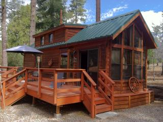 Dog Friendly Gorgeous Guest Cabin On 1.3 Acres - Idyllwild vacation rentals