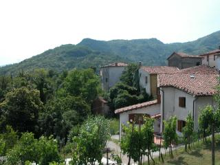 Cardoso Holiday House - Lucca vacation rentals