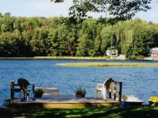 Dock Area - 2 bedroom lake home on Crescent lake - Newport - rentals