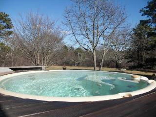 Celebrity Owned Hilltop Watervew with Hot Tub - Chilmark vacation rentals