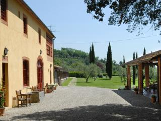 Farmhouse on a Wine Estate Near Lucca for a Group of Friends or Large Family - Casa Matilda - San Pietro a Marcigliano vacation rentals