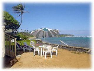 Kauai beach home. Less than 30 feet to the beach ! - Anahola vacation rentals