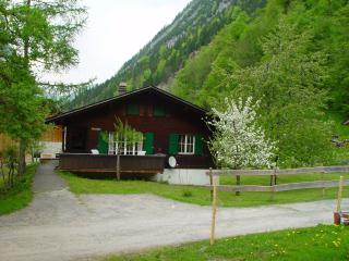 Traditional Swiss Chalet - Swiss Alps vacation rentals