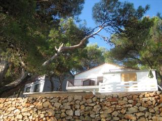 Studio apt by the sea, Valdarke, Losinj, Croatia - Mali Losinj vacation rentals