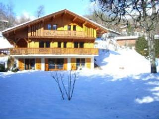 Chalet set in large grounds - Chalet Harmonie - Samoens - rentals