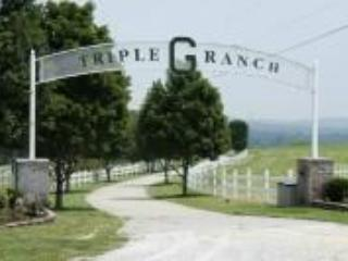 Luxury Home on 450+ Acre Ranch, Groups, Reunions - Branson vacation rentals