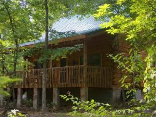 Our Father's House - Sevierville vacation rentals