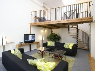 Great 4 bed city centre apartment with air con. - Czech Republic vacation rentals