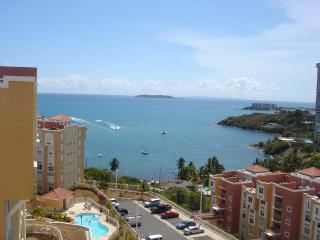 One Opportunity for an EXCELLENT Impression!!! - Fajardo vacation rentals