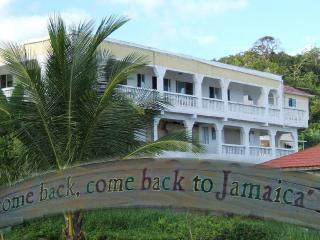 3 bedroom large home on the North side of Jamaica - Boscobel vacation rentals