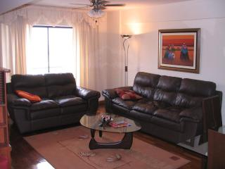 Miraflores heart, great location - Miraflores vacation rentals