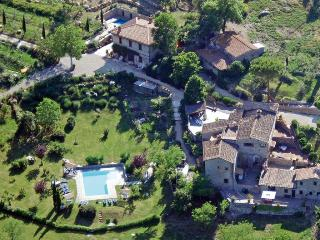 2 apt. -  2BR/2BA on eco farm near  Siena/Florence - Castellina In Chianti vacation rentals