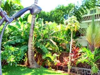 10 Yrs Great Reviews! Best Location/Hot Tub/Bikes - Oahu vacation rentals