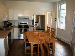 Beautiful 9BDR close parcs, Plateau and Old Port - Montreal vacation rentals