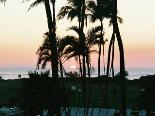 95+/Night 1BD/1BA Oceanfront Hawaiian R & R - Kihei vacation rentals