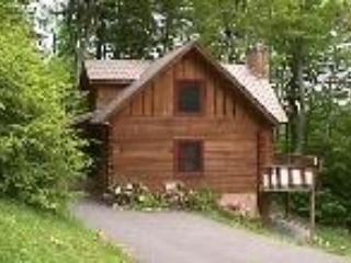 Wolf Laurel Mountain Getaway near Asheville, NC - Mars Hill vacation rentals