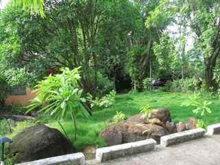 Front of property - Court Yard Cottage, Coubaril, Castries, St. Lucia - Castries - rentals